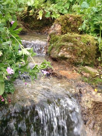 Hewletts Mill garden June 2014 404 - Copy - Copy