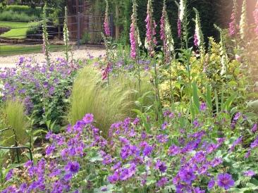 Hewletts Mill garden June 2014 512