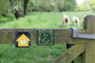 Leyland Trail gate and sheep