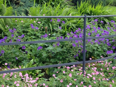Rails and herbaceous border